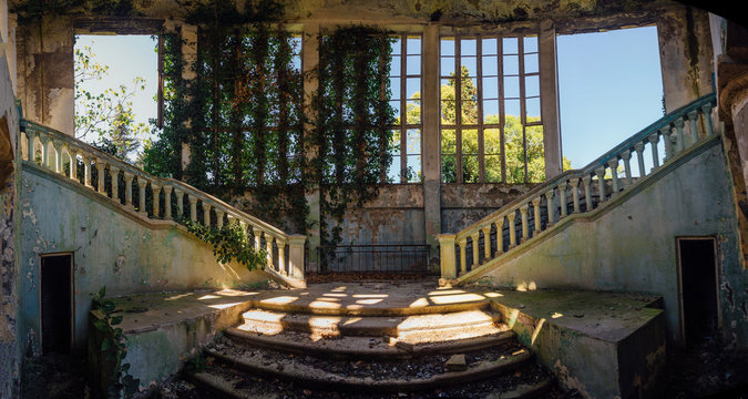 Ruined mansion interior overgrown by plants Overgrown by ivy windows and old staircase. Nature and abandoned architecture, green post-apocalyptic concept