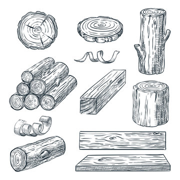 Wood logs, trunk and planks, vector sketch illustration. Hand drawn wooden materials. Firewood set