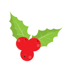 Isolated holly leaf icon. Christmas ornaments. Vector illustration design