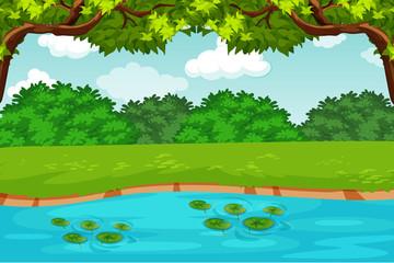 green pond nature scene