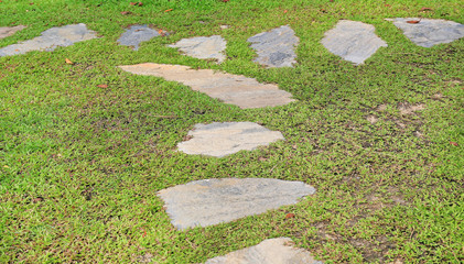 Stone pathway in the park with green grass background