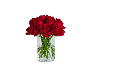 Roses in a glass vase cut the background out into white.