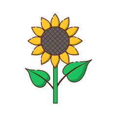 Vector flat cartoon sunflower icon