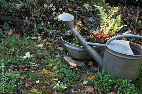 Alte Gießkannegartengarden Wasser Gartenarbeit Pflanze Green