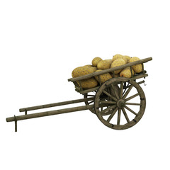 Melon in wooden cart