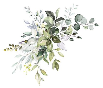 watercolor floral arrangements with leaves, herbs.  herbal illustration. Botanic composition for wedding, greeting card.