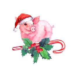 Sweet pig in red santa hat on candy cane, xmas mistletoe. Watercolor for Christmas, New Year 2019