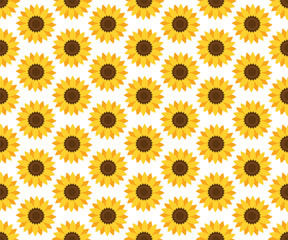 Vector seamless sunflower pattern. Floral pattern.