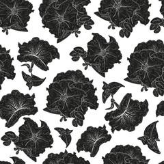 Petunia. Flower. Black silhouette on white background. Texture, wallpaper, seamless.