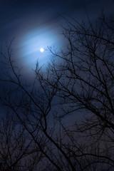 moon long exposure