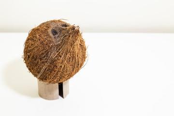 Coconut face portraiture