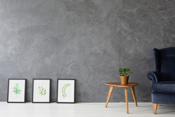Leaf pictures in black frames next to small wooden table with pot and plant and velvet dark blue armchair, real photo with copy space on the concrete wall