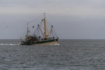 Fischkutter beim Fang