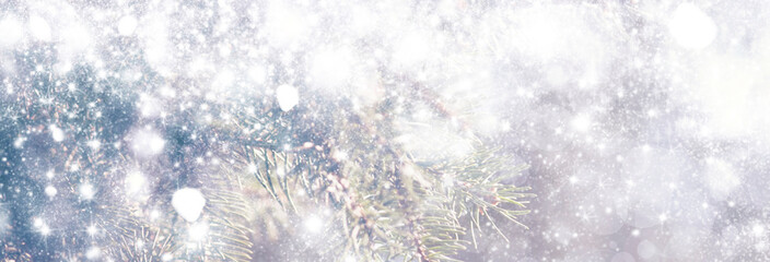 New Year or Christmas background with Christmas tree and colorful bokeh lights, banner, selective focus