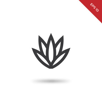 Agave vector icon
