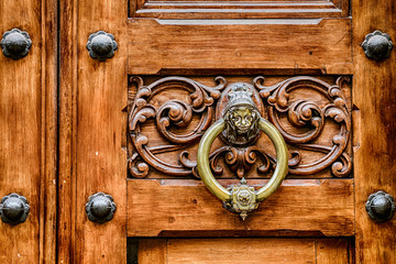 Ancient knocker on old wood door