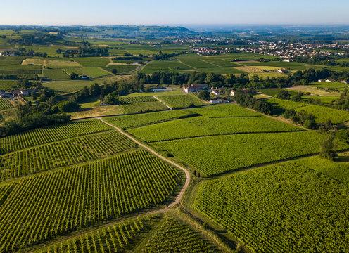 Aerial view, Bordeaux vineyard, landscape vineyard south west of france