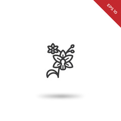 Orchid vector icon