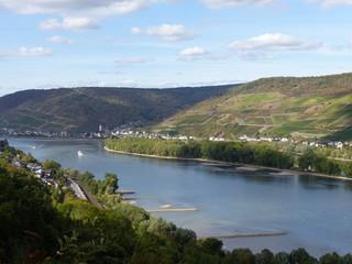 Blick auf Lorch im Rheingau