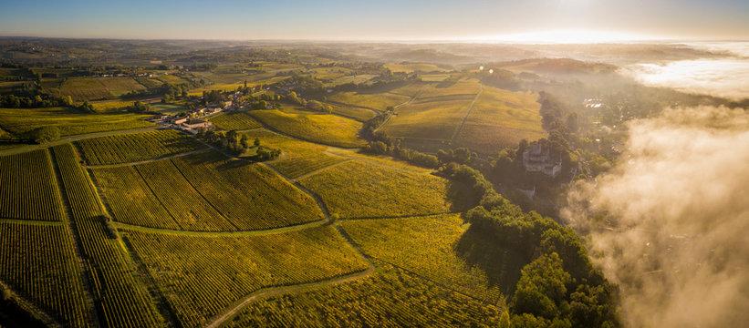 Aerial view Bordeaux Vineyard at sunrise, Entre deux mers, Langoiran, Gironde