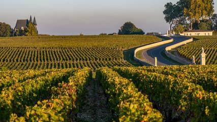 Route des Chateaux, Vineyard in Medoc, famous wine estate of Bordeaux wine