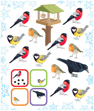 Puzzle for kids count winter birds