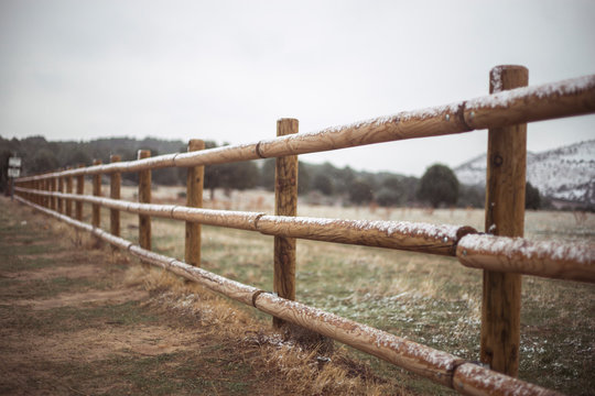 snow fence in nature