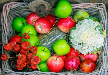Basket with green, red apples and zucchini.