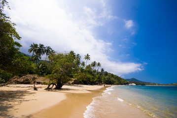 Tayrona National Park beach in Colombia