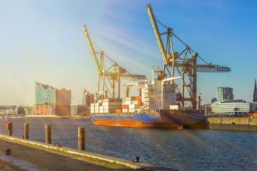 Panorama Hamburg Speicherstadt mit Elbphilharmonie, Containerschiff und Kränen
