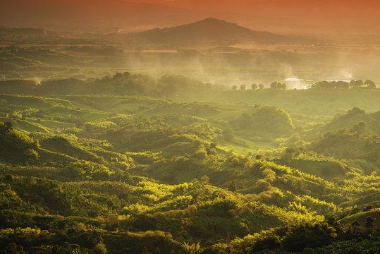 Foggy landscape in Buenavista, Quindio, Colombia, South America