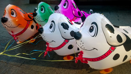 Colorful dog shaped balloons creating good mood, birthday presents and childhood