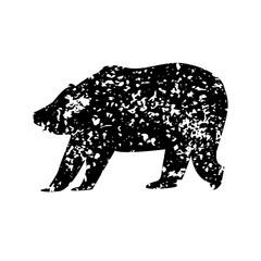 bear texture