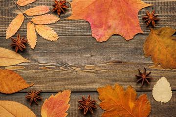 autumn composition flatlay