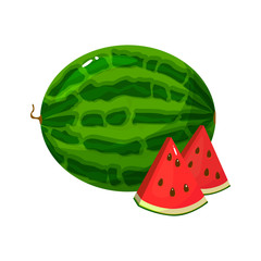 Cartoon fresh watermelon isolated on white background