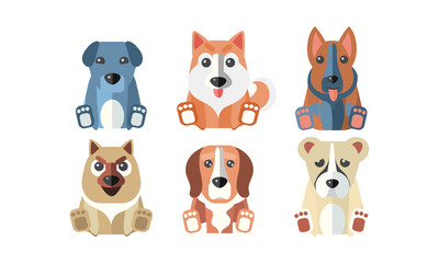 Cute dogs of different breeds set, cartoon animals pets vector Illustration on a white background