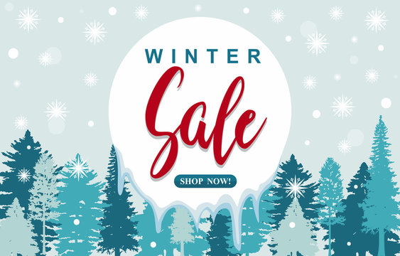 Winter Sale Marketing Promotion Banner Card Snow Pine Forest
