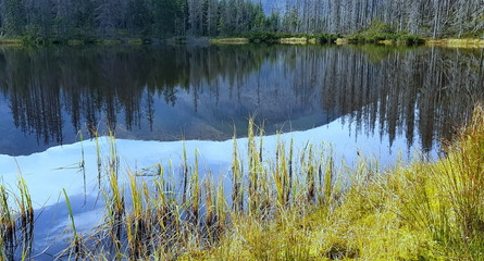 Fototapeta Smreczyński Staw, polodowcowe jezioro morenowe w polskich Tatrach Zachodnich, na końcu szlaku przez Dolinę Kościeliska