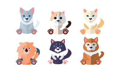 Cute cats set, cartoon animals pets sitting vector Illustration on a white background