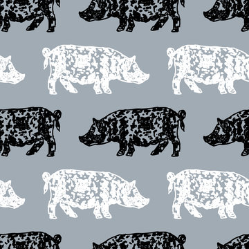 Vector background of spotted pigs