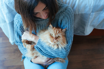 domestic cat with owner on winter