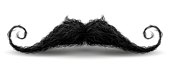 Perfect hipster mustache. Illustration with charm, Isolated on white background