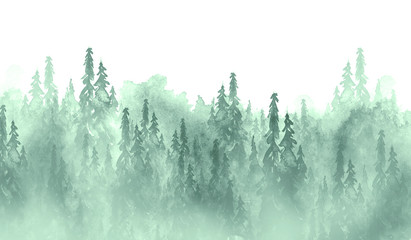 Watercolor group of trees - fir, pine, cedar, fir-tree. green forest, landscape, forest landscape. Drawing on white isolated background. Misty forest in haz. Ecological poster. Watercolor painting Wall mural