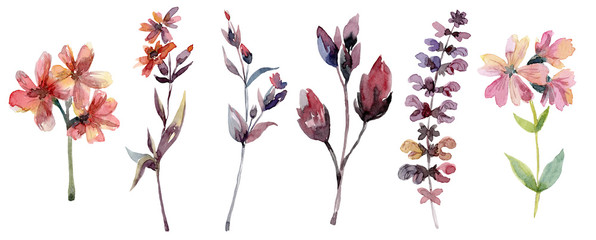 Branches with leaves and flowers, floral set