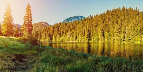 Wonderful summer morning. majestic mountain lake in mountain. Lakul Rosu - Red Lake or Lake Killer. The location of Europe. Eastern Carpathians. Romania.