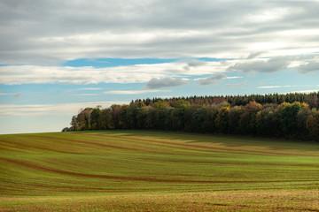 Sillons d'un champ à l'orée d'une forêt de Moselle en automne