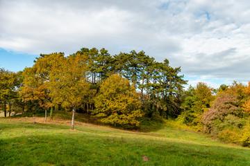 Couleurs d'automne en Moselle