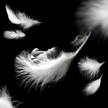 Newborn baby sleeping on feather
