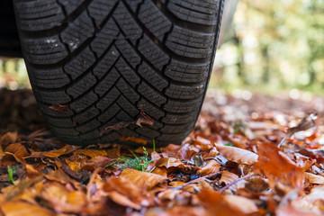 Reifen auf nasser Fahrban