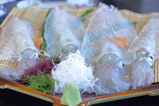 和食 イカの刺身 姿そのままの活き造り
